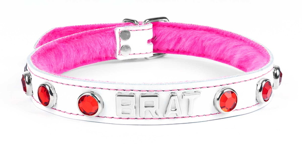 custom collar-white brat