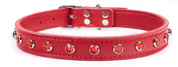 red lambskin with red gems
