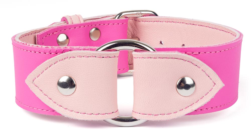 O-ring_collar_pink_and_pastel.jpg